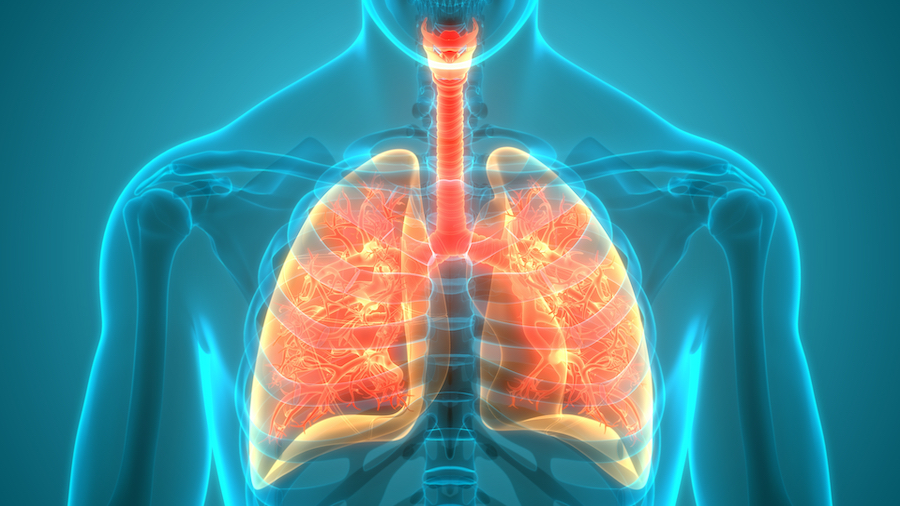 COVID-19 vaccination among the cystic fibrosis (CF) population in Wales